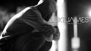 Luke James - I Want You (Acapella)