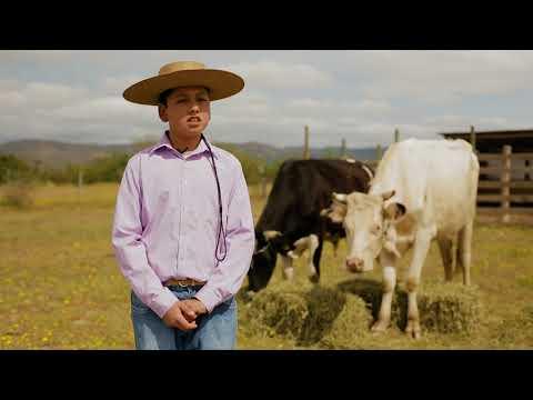 La vida en el campo en Nilahue Cornejo