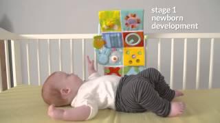 Video: Taf Toys mängukeskus võrevoodisse