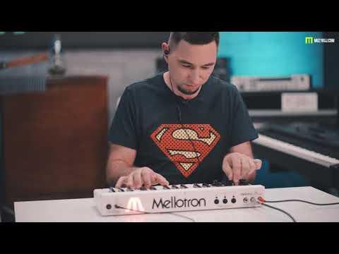 Mellotron MINI PRESET SOUNDS