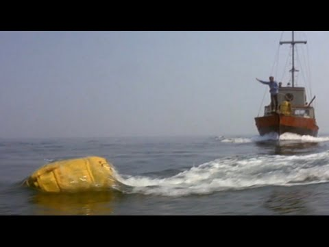 Jaws 1975 The Great Shark Chase