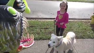 Repeat youtube video Angler Fish Attacks Girl Walking Her Dog