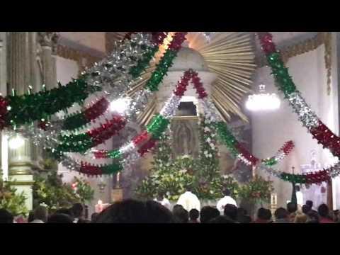 Mañanitas a la Virgen Guadalupe Parroquia San Vicente 4K