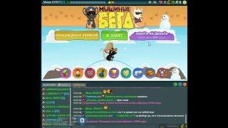 видео Мышиные бега ВКонтакте