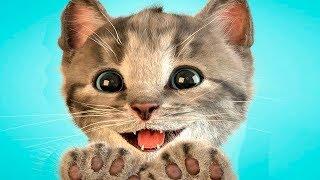 Мой Маленький Котенок.Любимый Питомец.Симулятор Котика.Игровой Мультик для Детей
