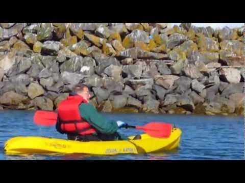Guided Kayaking Tours In Kachemak Bay State Park | Central Charters & Tours | Homer, Alaska