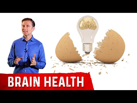Why Eating Eggs Helps Your Brain