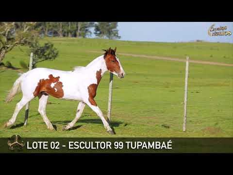 LOTE 02   ESCULTOR 99 TUPAMBAÉ