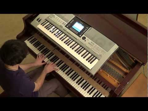Pitbull Usher AfroJack - Party ain't over piano & keyboard synth cover by LiveDjFlo