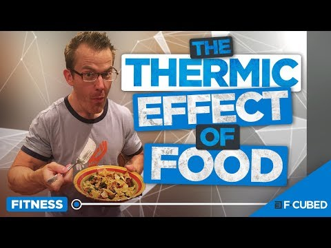 The Thermic Effect Of Food (What is TEF?)