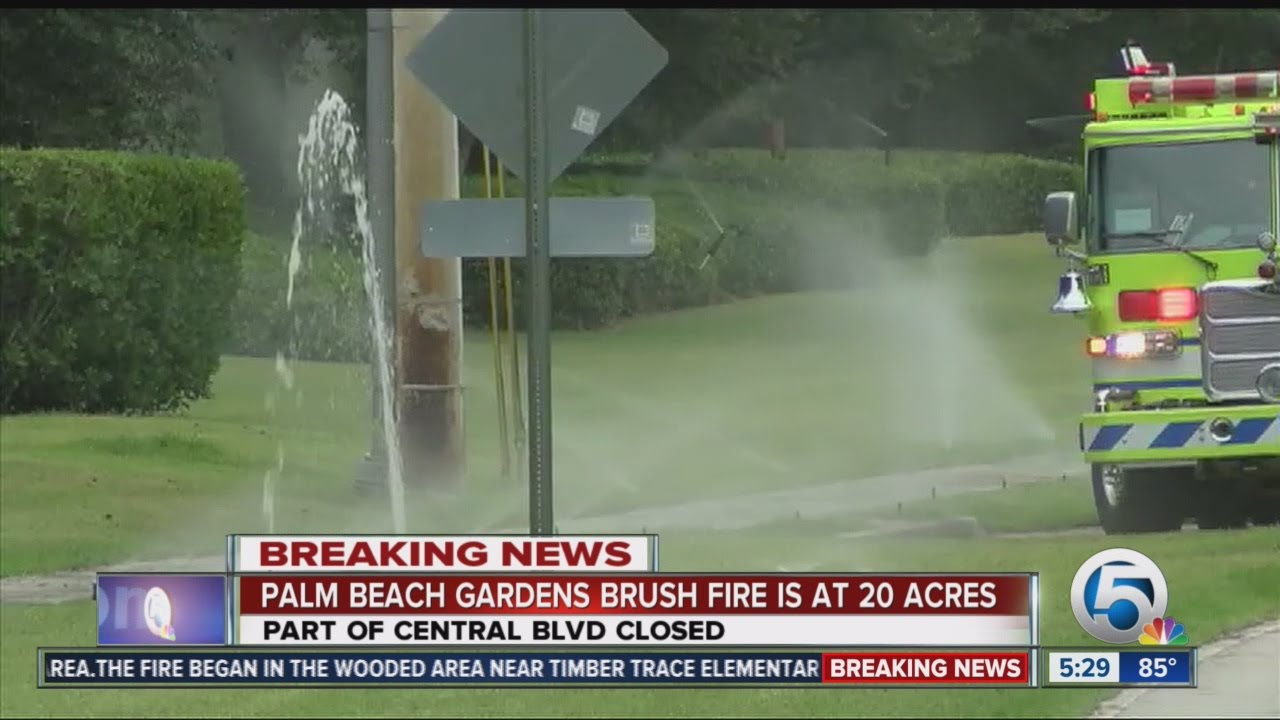 Crews battle brush fire in palm beach gardens youtube for Fire in palm beach gardens today