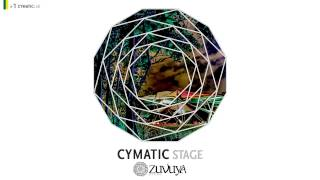 03. Osso - Bugdub [VA - 2013 - Cymatic Stage #01 (Zuvuya Festival)] by CYMATIC LAB