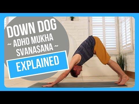 How to do Downward Dog Adho Mukha Svanasana