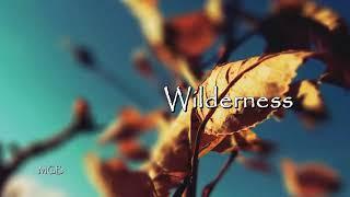 [Free] (Soulful Urban Gospel Type Beat- 2021) Wilderness: ~ Gospel Beats Instrumental 2021