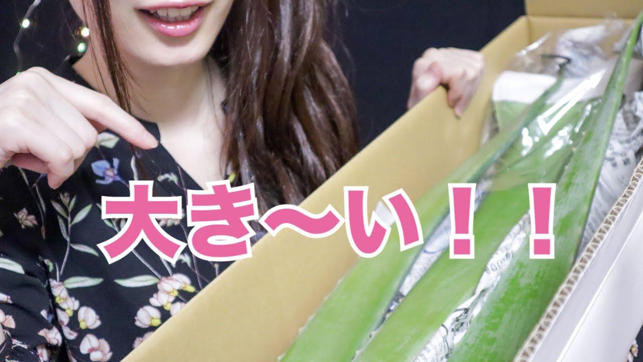 [Non ASMR] Big Aloe Vera Unboxing😂 !!!
