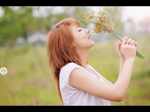 [Video Lyrics Kara] Sự Thật Đã Bỏ Quên-Hà Duy Thái