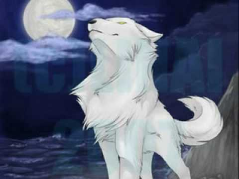 White Wolf With Blue Eyes Anime