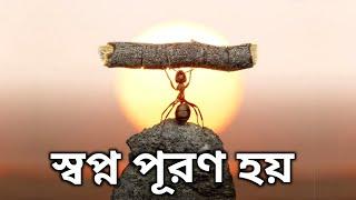স্বপ্ন একমাত্র এভাবে পূরণ হয় || DREAM BANGLA MOTIVATION VIDEO || INSPIRATIONAL SPEECH