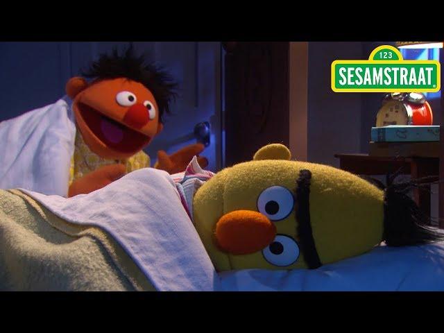 Vind je me aardig? - Bert & Ernie - Liedje - Sesamstraat