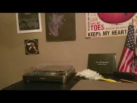 Avey Tare & Panda Bear (Animal Collective) - Alvin Row from STGSTV Vinyl + commentary