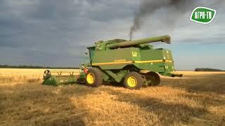 В 2017 году Кубань собирает рекордный урожай зерна