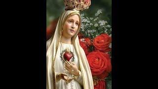 SNEHAVATHARAMAM AMME /CHRISTIAN MARIAN DEVOTIONAL SONGS / ALMIGHTY MUSICAL CREATIONS