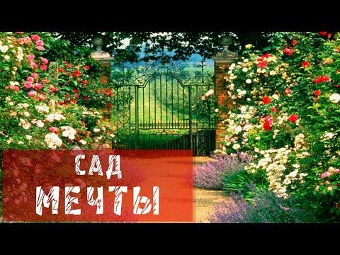 видео: Сад мечты Елены Новодержкиной
