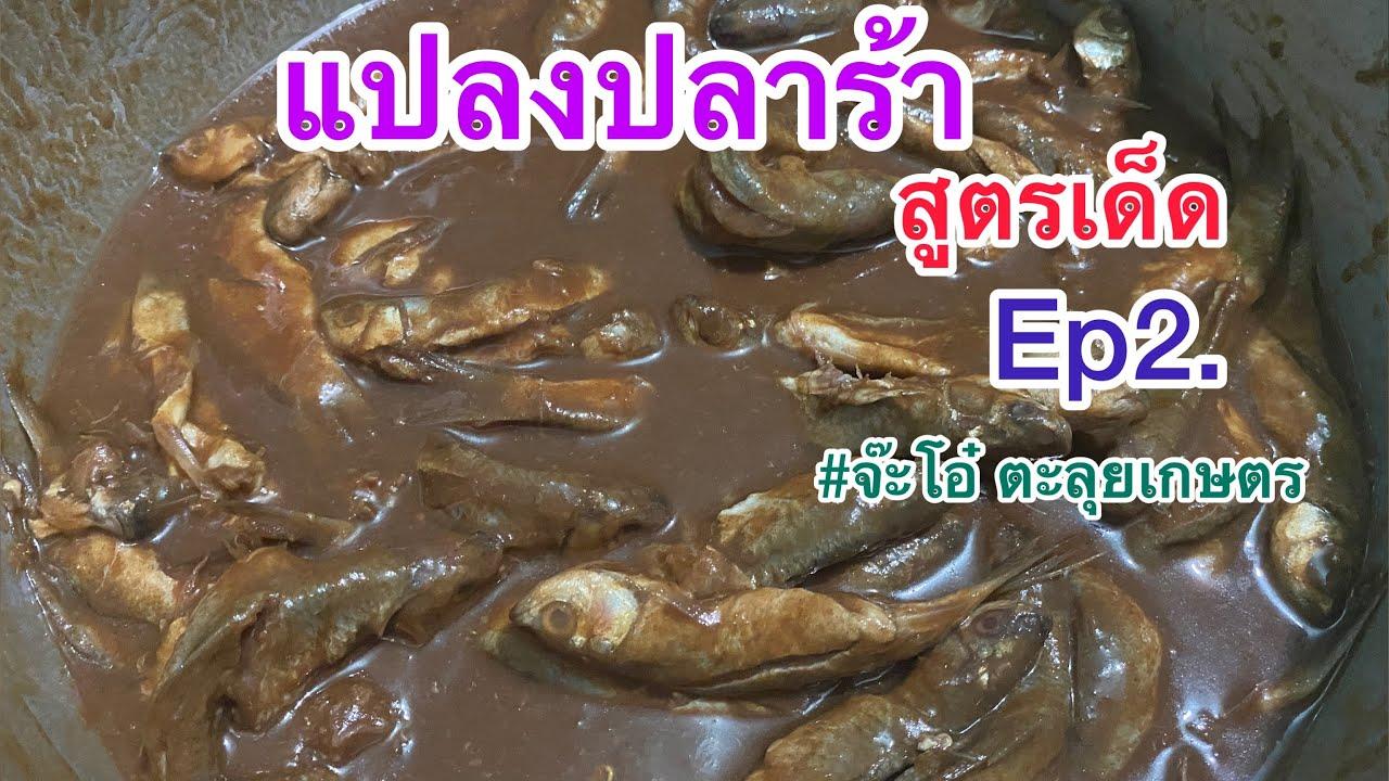 วิธีทำปลาร้าสูตรเด็ดหอมนัว |แปลงปลาร้าพร้อมกินเร็วใน2เดือนและเก็บไว้กินได้ตลอดปี