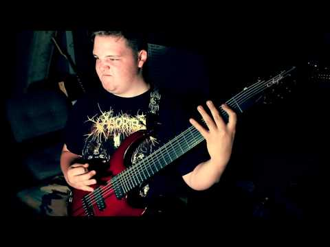 Drewsif Stalin - What Makes You Beautiful (One Direction Metal Cover)
