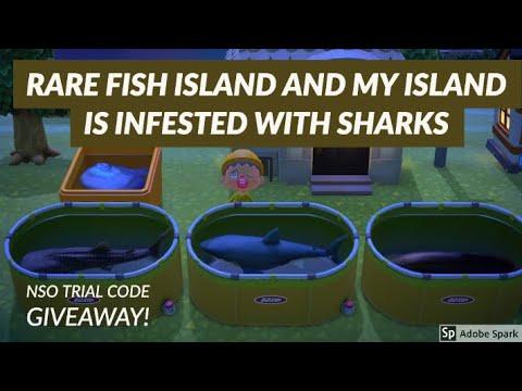 MY ISLAND IS SHARK ISLAND PLUS RARE FISH ISLAND AND AQUARIUM TOUR IN ANIMAL CROSSING NEW HORIZONS