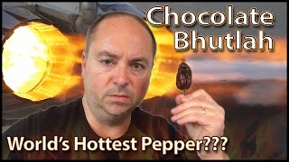 Dad eats Chocolate Bhutlah : World's Hottest Pepper Challenge, Crude Brothers