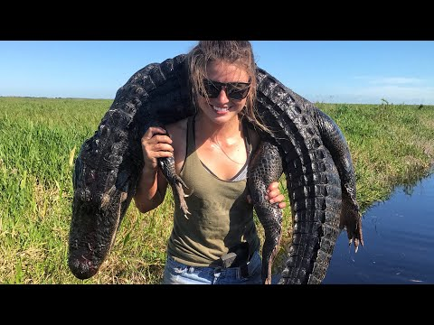 Catching ALLIGATORS in Louisiana!