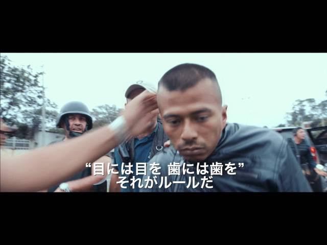 映画『カルテル・ランド』予告編