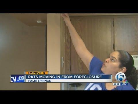 Foreclosure rat problem