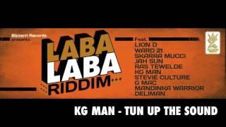 Reggae 2013 - Laba Laba Riddim (Bizzarri Records 2013)
