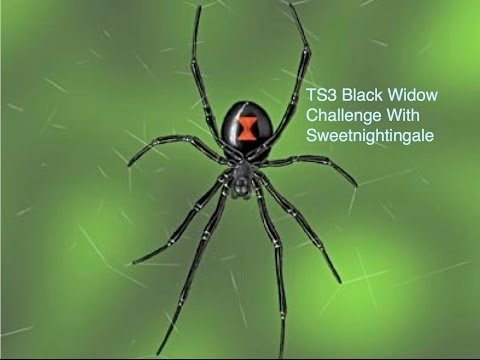 TS3 Black Widow Challenge Part 22, Future Living