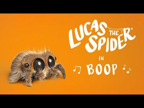 Lucas the Spider - Boop!