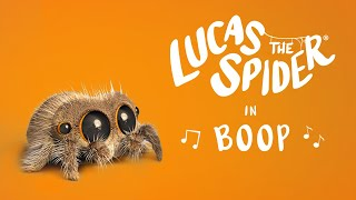 Lucas the Spider - Boop!