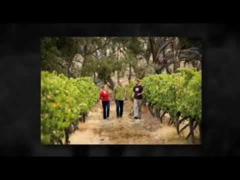 Bendigo Tourism Information: Things to Do