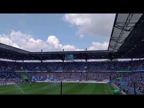 MSV Duisburg 0:2 VfL Bochum | Zebra Twist