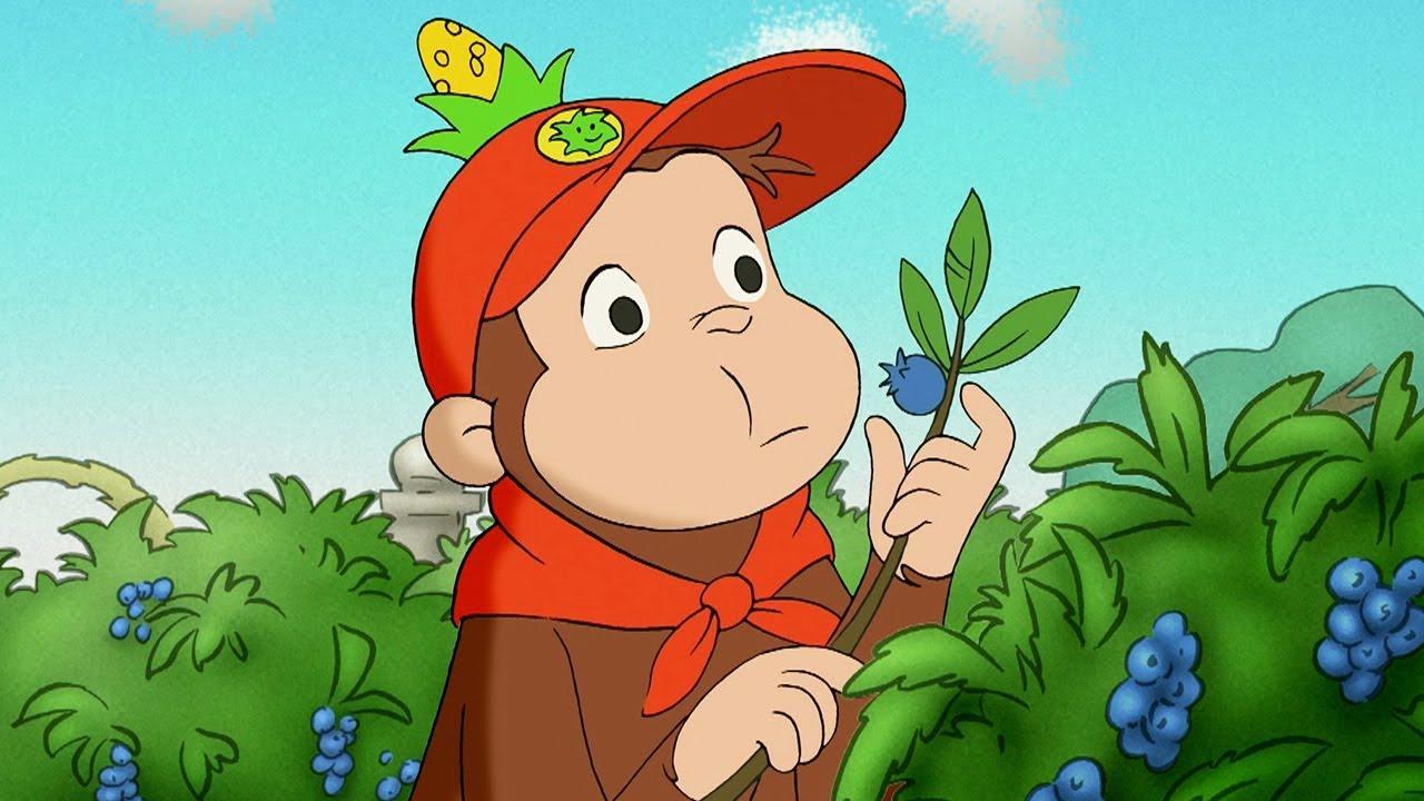 Nicke Nyfiken 🐵 Nickes Första Scoututflykt 🐵 Tecknad Film för Barn 🐵 Helt Avsnitt #1