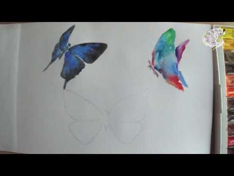 Как нарисовать бабочку акварелью. Рисуем бабочку поэтапно для начинающих.