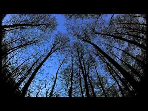 Anathema Dreaming Light [HD] INCREDIBLE SYNCHRONICITY