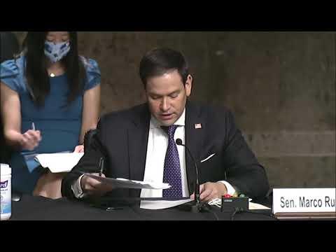 Sen Rubio Offers Testimony on His Hong Kong Safe Harbor Act at Senate Judiciary Subcommittee Hearing