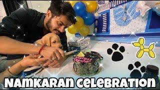 Namkaran Celebration    Best Day    Cutest Vlog   Dog Namkaran Vlog    Naming Ceremony   