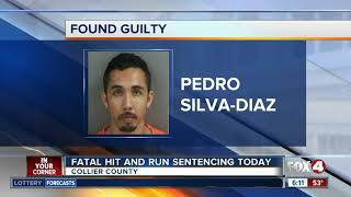 Fatal hit and run sentencing expected Thursday
