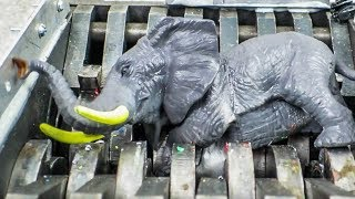 Shredding an Elephant!! Safari Animals Destroyed! What's Inside Slimey Snake Water Bath Mecard Toys!
