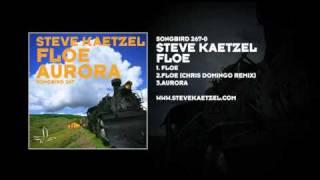Steve Kaetzel - Floe / Aurora