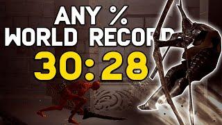 yet another WORLD RECORD Dark Souls speedrun