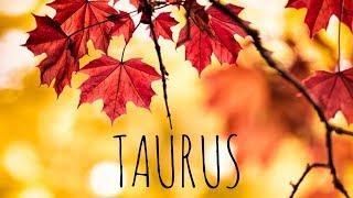 TAURUS NOVEMBER 2018 🍁🦃🍂 LOVE TAROT READING A FINAL VERDICT ON THE WAY